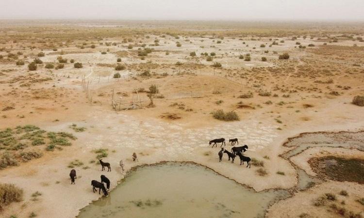 Lò phản ứng hạt nhân muối nóng chảy có thể xây trên sa mạc khan hiếm nước. Ảnh: Reuters.