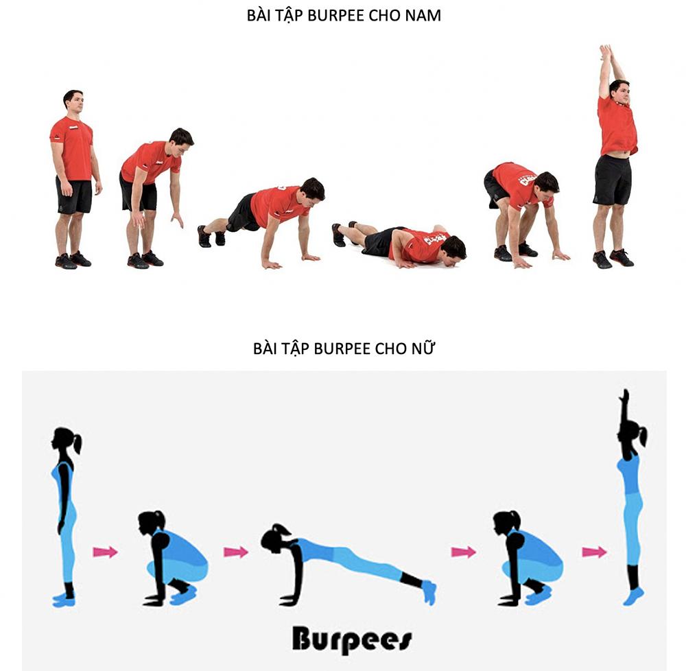 Những bài tập thể dục đơn giản tại nhà cho học sinh - 5