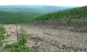 Phát hiện 'dòng sông đá' trong rừng nguyên sinh