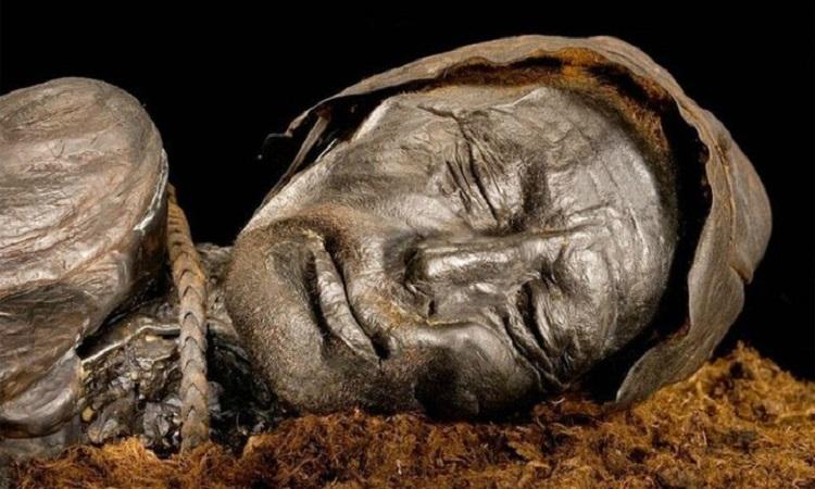 Xác ướp Tollund Man. Ảnh: Antiquity.