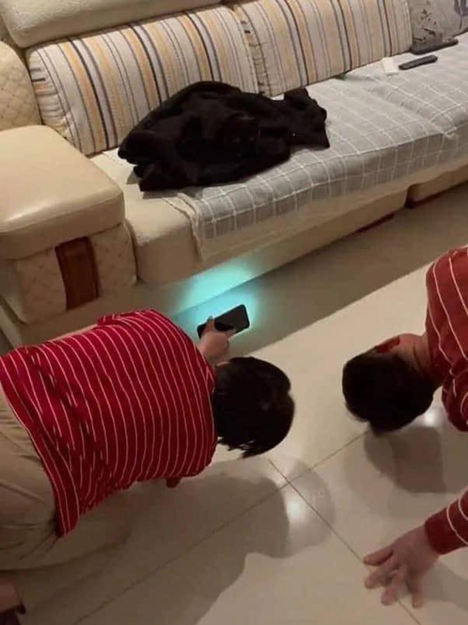 Chủ nhà bật đèn pin tìm mèo dưới ghế.
