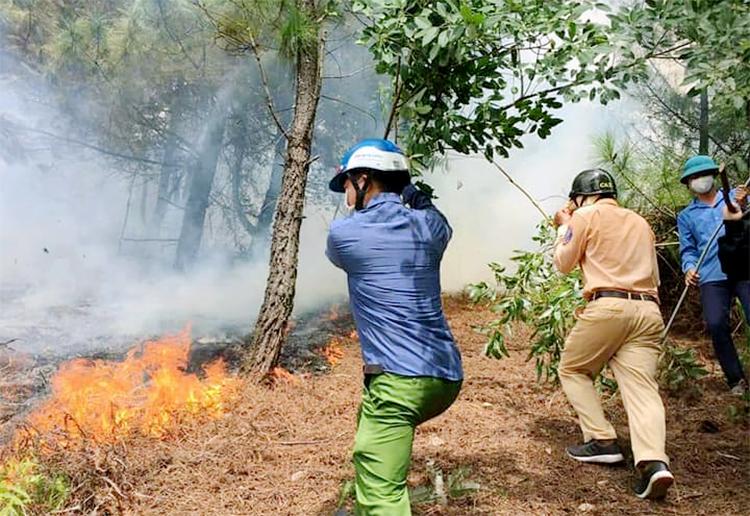 Nhiều lực lượng tham gia chữa cháy tại đồi Rú Trác, chiều 30/7. Ảnh: Hùng Lê