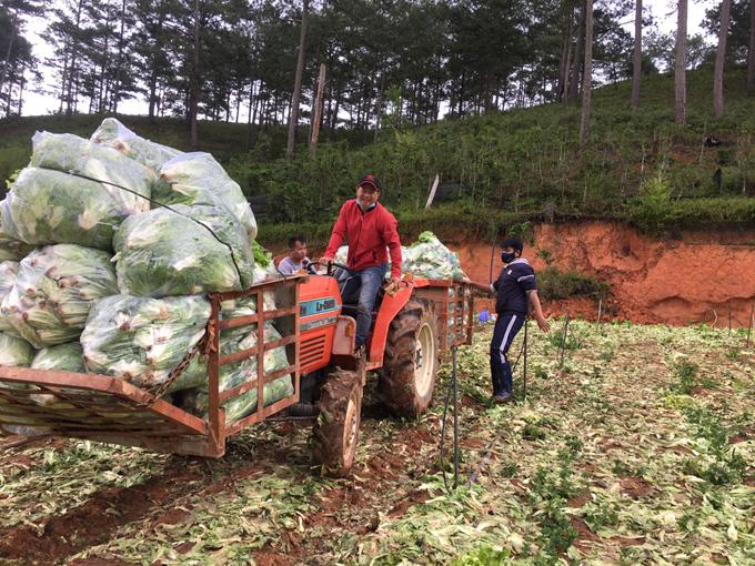 Thầy Nguyên (áo đỏ) giúp chất rau lên xe để chuyển lên điểm tập kết trên đỉnh đồi. Ảnh: NVCC.