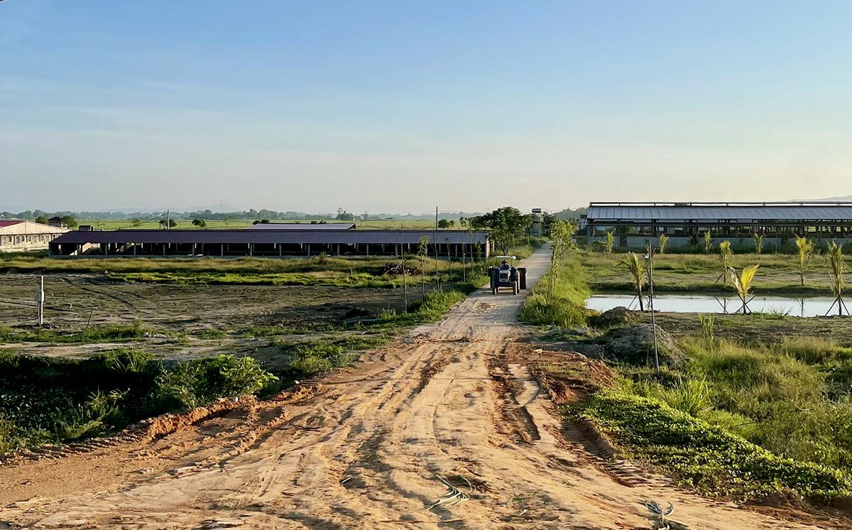 Khu vực nuôi lợn của Công ty Khánh giang tại xã An Dũng, huyện Đức Thọ. Ảnh: Đức Hùng