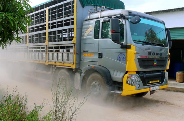 Xe tải của đối tác đến để chở lợn của Công ty Khánh giang đưa đi tiêu thụ, chiều 14/8. Ảnh: Đức Hùng
