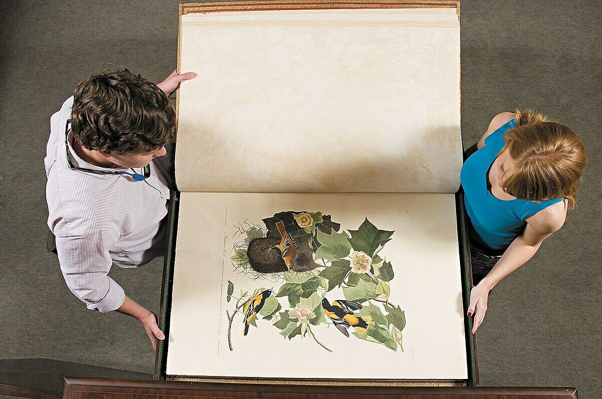 Ấn bản đầu tiên của bộ sách Birds of America được John James Audubon vẽ tay năm 1827 là một trong những kho báu của thư viện đại học Transylvania, bị lấy đi trong vụ trộm năm 2004. Ảnh: Facebook Transylvania University