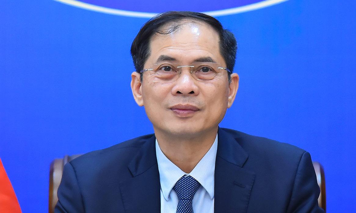 Bộ trưởng Bùi Thanh Sơn tại Hội nghị huy động hỗ trợ nhân đạo cho Myanmar hôm 18/8. Ảnh: BNG.