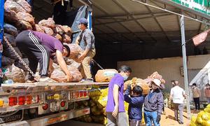 Lâm Đồng hỗ trợ TP HCM 5.000 tấn nông sản