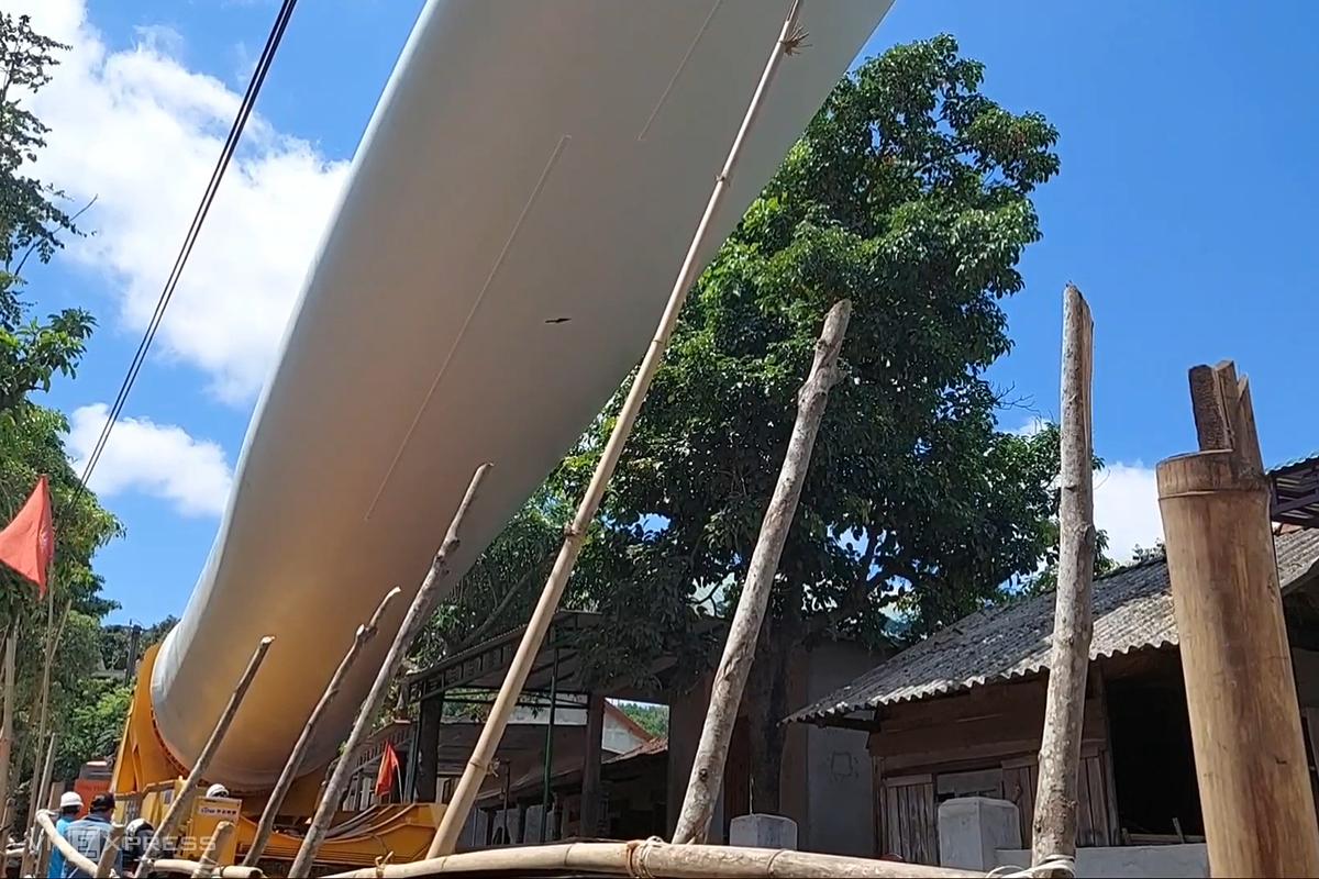 2 cây xanh vướng vào cánh điện gió được người dân đòi bồi thường 100 triệu đồng. Ảnh: Quang Hà