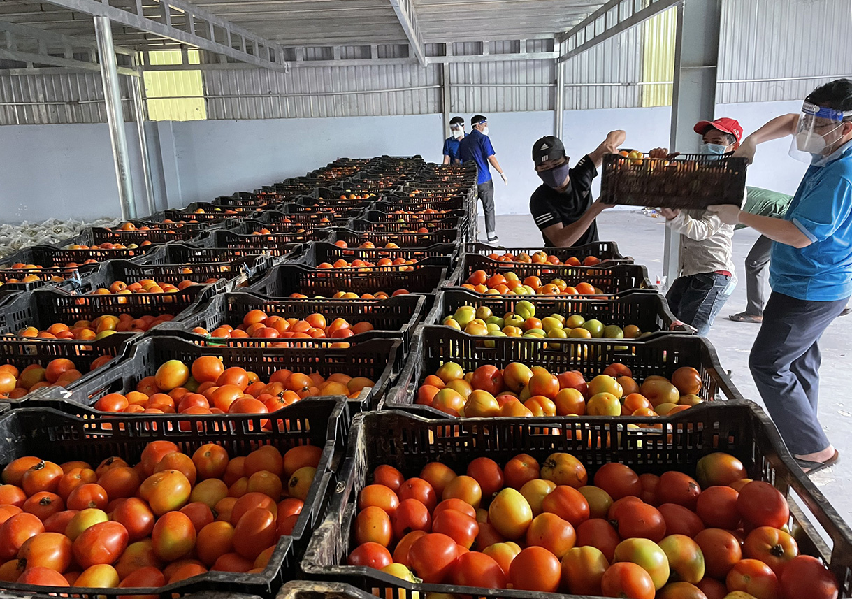 Một kho lương thực, thực phẩm ở TX Tân Uyên để chuẩn bị cung ứng cho người dân trong thời gian siết chặt, đông cứng. Ảnh: Thanh Liêm