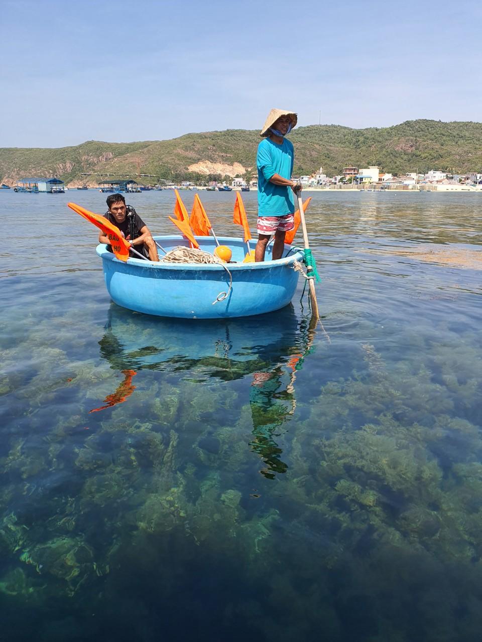 Khoanh vùng cắm phao tiêu bảo vệ rạn san hô ở Quy Nhơn. Ảnh: Nguyễn Tôn Xuân Sáng.