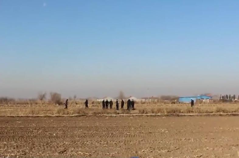 Cánh đồng ngô nơi cảnh sát tìm thấy thi thể của nữ nạn nhân. Ảnh: CCTV12
