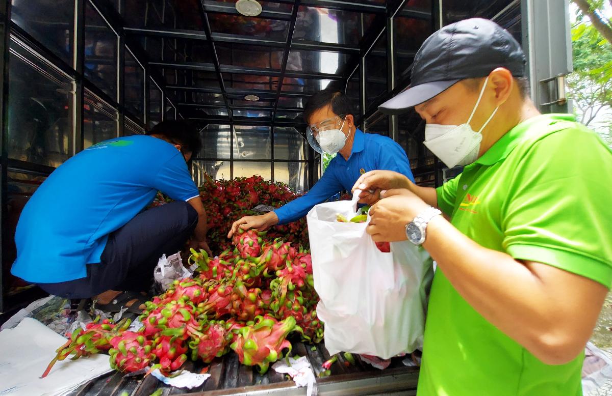 Cán bộ công đoàn huyện Bình Chánh, TP HCM nhận thanh long từ một đơn vị tài trợ cho công nhân khó khăn, tháng 8/2021. Ảnh: An Phương.
