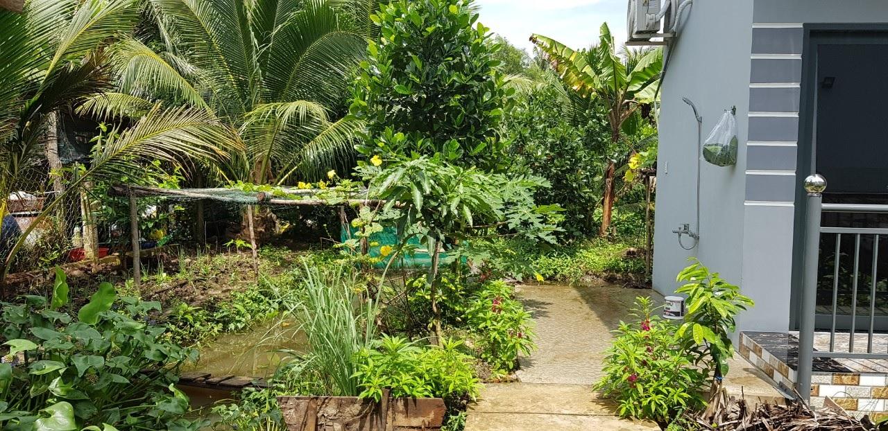 Khuôn viên 1.000 m2 của vợ chồng 7X bỏ phố về quê.