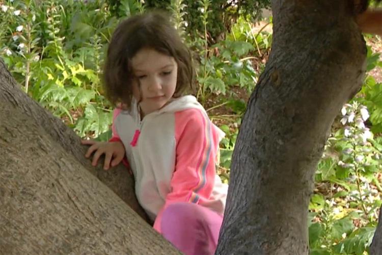 Bé gái 4 tuổi tên Annika Arnout phát hiện loài ong tưởng đã tuyệt chủng ở Mỹ. Ảnh cắt từ video: CBS