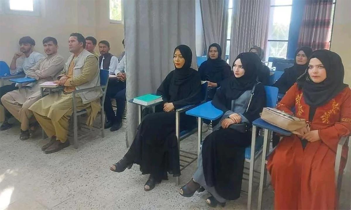 Sinh viên nam và nữ ngồi hai bên tấm màn tại một lớp học của Đại học Avicenna ở thủ đô Kabul, Afghanistan ngày 6/9. Ảnh: Reuters.