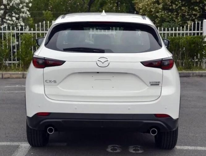 Khác biệt dễ nhận biết ở đuôi xe là đèn phản quang nằm cao hơn so với ống xả. Ảnh: Autospy
