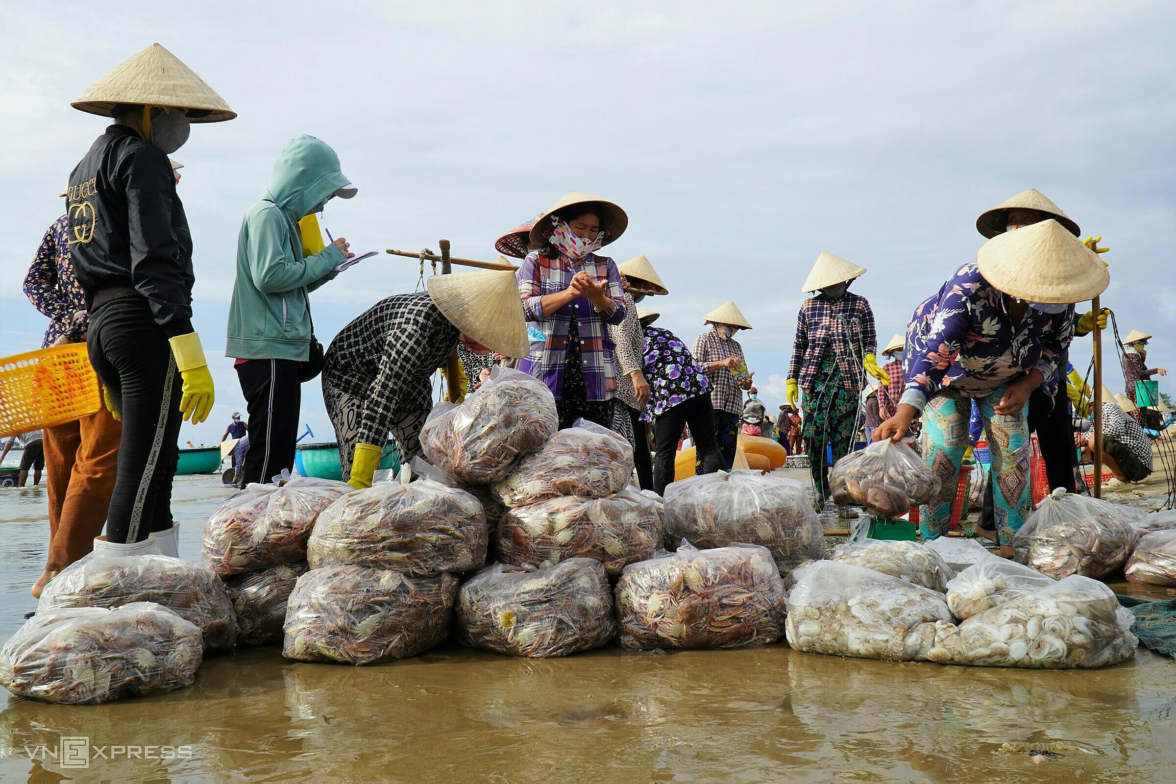 Thương lái đang chọn mua ghẹ và mực trên bến cá Bãi Sau - Mũi Né. Ảnh: Việt Quốc