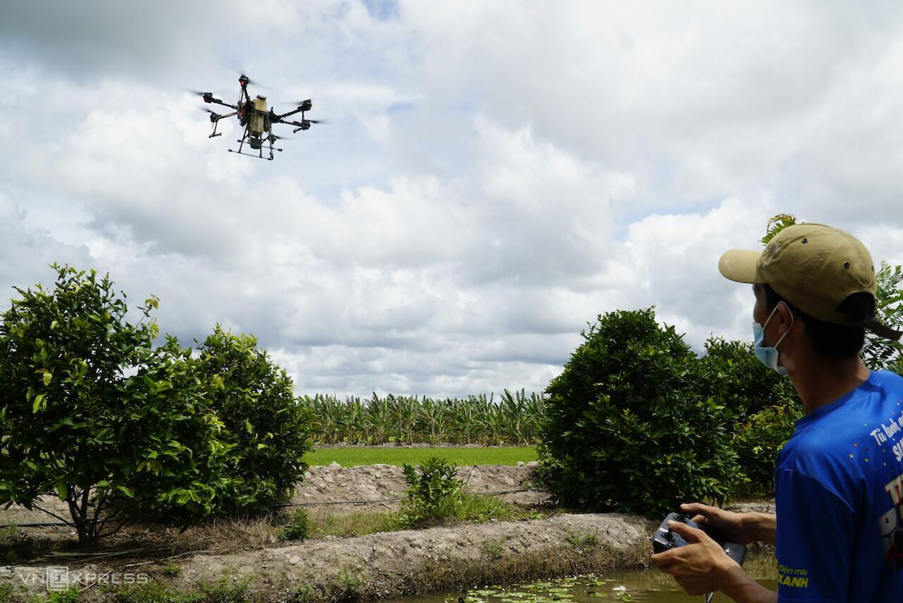 Nguyễn Tấn Đạt điều khiển drone phun thuốc tại vườn mận. Vào nghề gần 1 năm Đạt cho biết công việc này không nặng nhọc chân tay chủ yếu nắm rõ kỹ thuật vận hành drone và chăm chỉ. Ảnh: Ngọc Tài