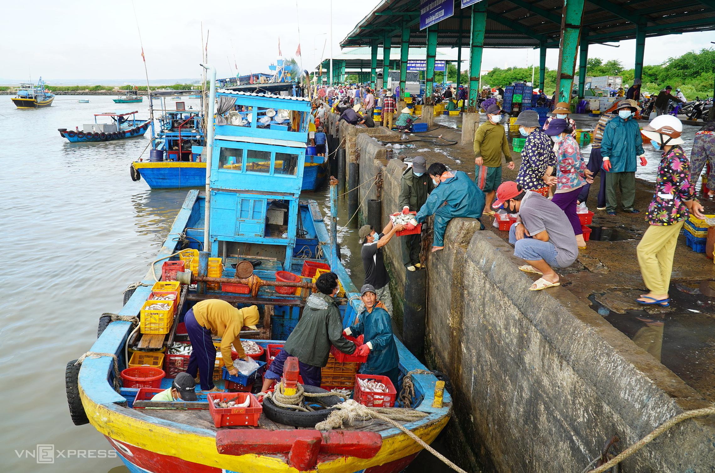 Một chiếc tàu cập cảng Phú Hài (TP Phan Thiết) chuyển cá lên bán, ngày 11/9. Ảnh: Việt Quốc