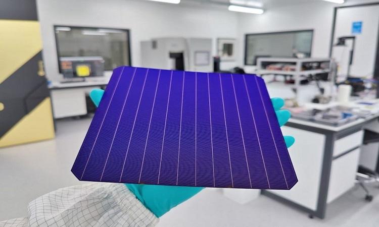 Tế bào quang điện của SunDrive. Ảnh: SunDrive