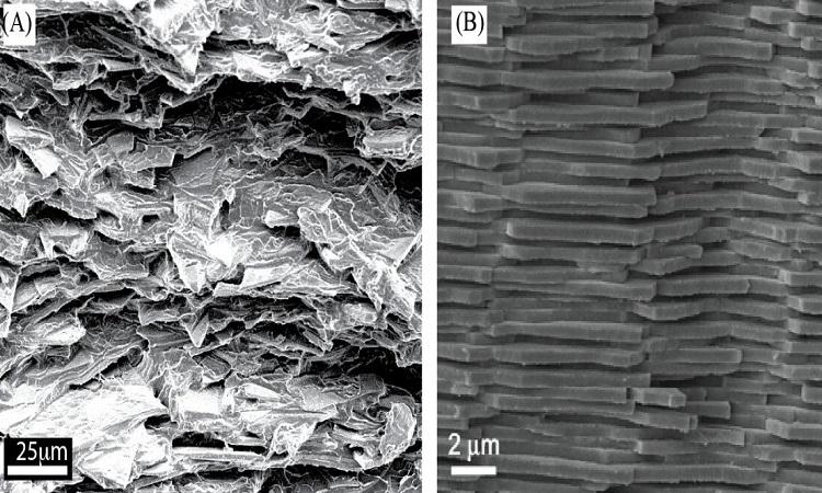 Cấu trúc của vật liệu kính mới (A) và xà cừ (B). Ảnh: Đại học McGill