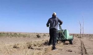 Công nghệ giúp nông dân kiểm soát sa mạc hóa