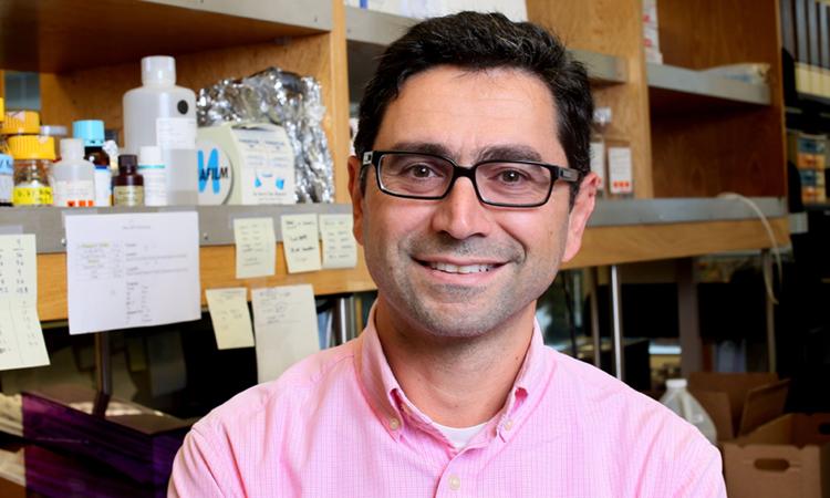 Ardem Patapoutian, nhà khoa học sinh năm 1967 tại Beirut, Lebanon. Ảnh: Twitter/Nobel Prize