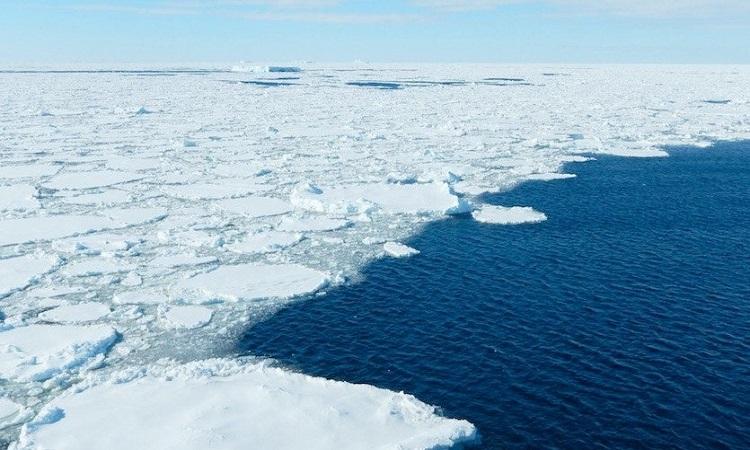 Băng trên biển ở Nam Cực. Ảnh: Hannah Zanowski/Đại học Washington