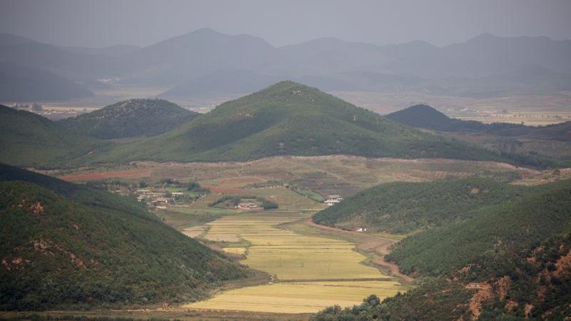 Toàn cảnh cánh đồng lúa ở làng Kaepoong, Triều Tiên hôm 5/10. Ảnh: Reuters.