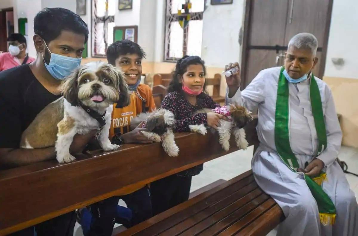 Cha Joe Dsouza làm lễ ban phước cho các con chó cưng trong nhà thờ Evangelist hôm 10/10. Ảnh: PTI