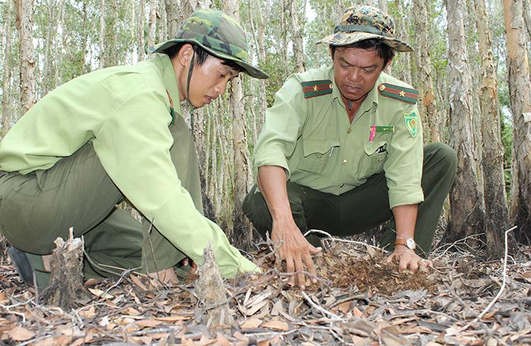 Đội bảo vệ rừng kiểm tra phòng chống cháy rừng tại khu du lịch sinh thái Lung Ngọc Hoàng.
