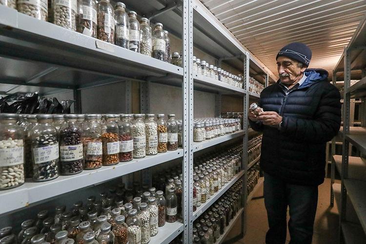 Bên trong kho chứa hạt giống dưới tầng đất đóng băng vĩnh cửu ở Yakutia. Ảnh: Reuters