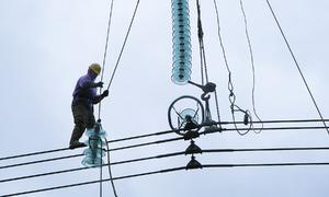 Công nhân đu mình thay sứ đường dây 500 kV