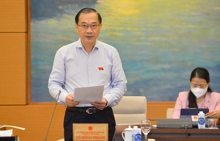 Chủ nhiệm Ủy ban Kinh tế Vũ Hồng Thanh trình bày báo cáo thẩm tra. Ảnh: Media QH